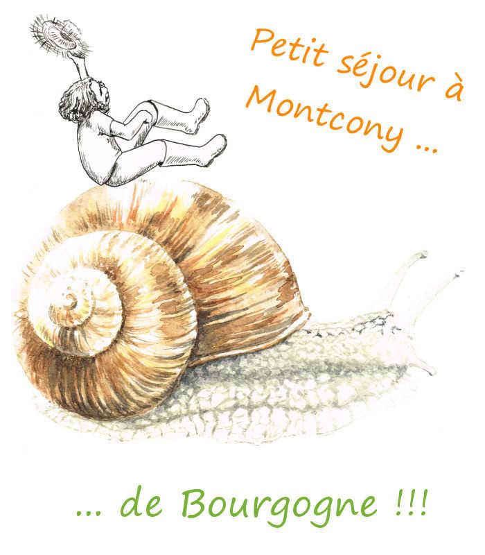 L'escargot … de Bourgogne