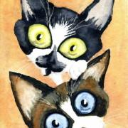 Fritz et Spike De Lamaison