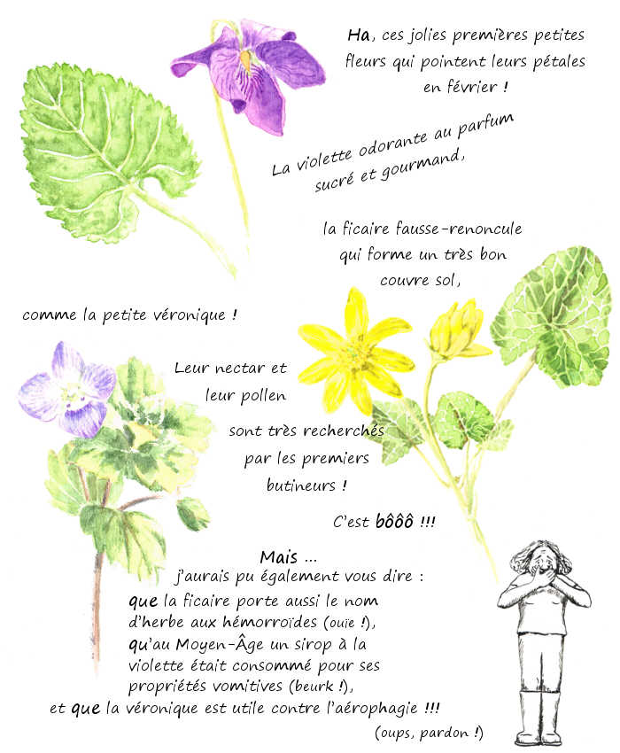 les premières petites fleurs
