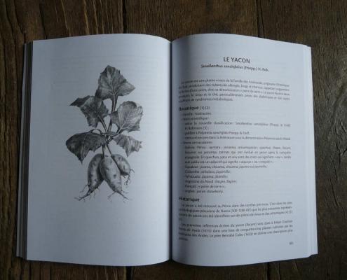 Trésors alimentaires des Andes-page 105
