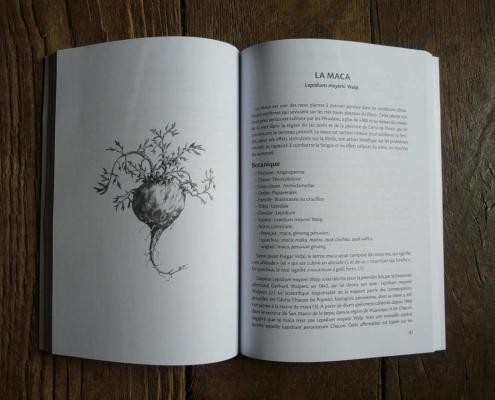 Trésors alimentaires des Andes-page 81